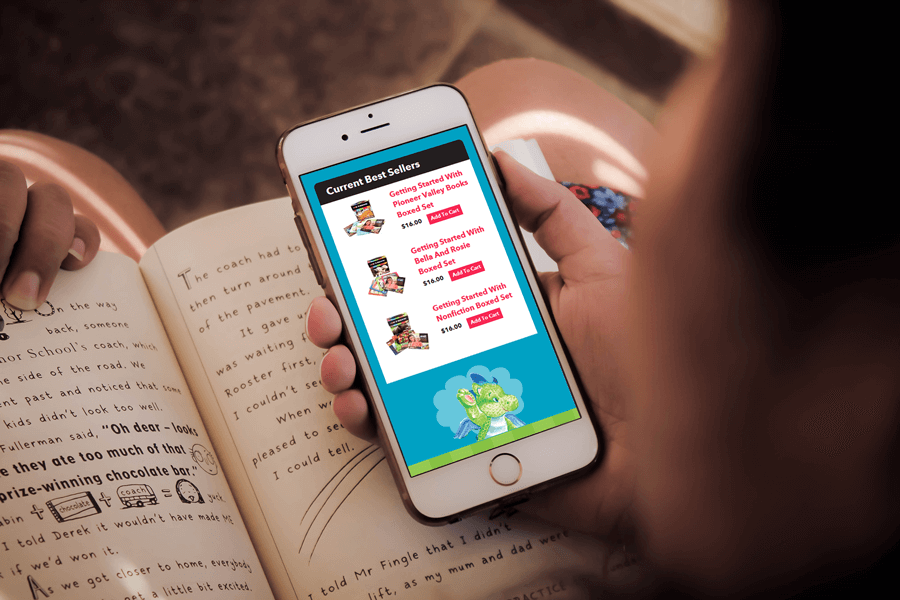 Pionner Valley Books, Magento Responsive Web Development MA
